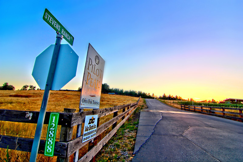Pilot Peak Winery ~ located at the intersection of Stevens Ranch Road and Spenceville Road, Penn  Valley Calif.  You can't miss it, it's right across the street from some cows.