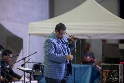 014 DCA Jazz at ArtsPark