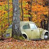 VW in fall