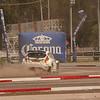WRC Rally Mexico - 2011
