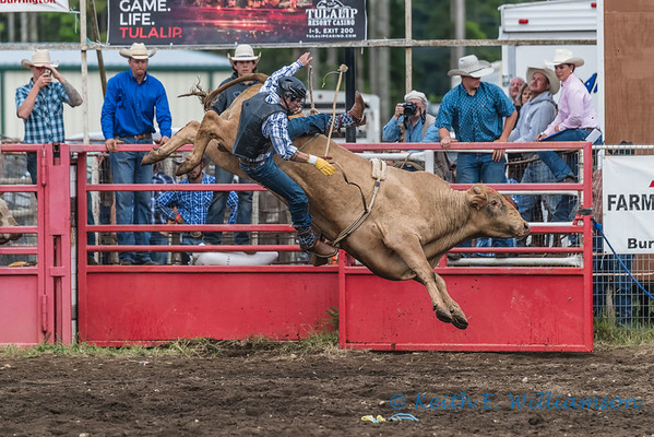 Darrington Rodeo 2016