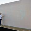Ball Wall W3-1