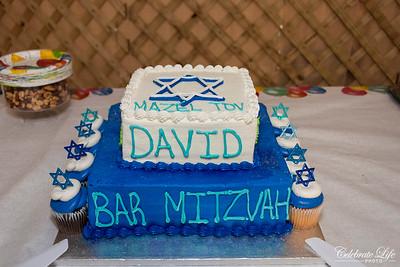 David  019
