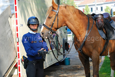 A police woman of the Belgian federal mounted police making ready to get on her horse.