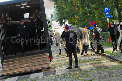 Arrival of the Belgian federal mounted police. The horses are let out of the Van and being taken care of.