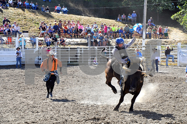 -Messenger photo by Joe Sutter<br /> <br /> Alex Smith, 15, of Story City, hangs on during his ride in the Junior Bulls event, followed closely by bullfighter Will O'Connell. Smith scored 82 in his event. The winner was Dalton Krantz, 14, of Somers, who scored a 90.