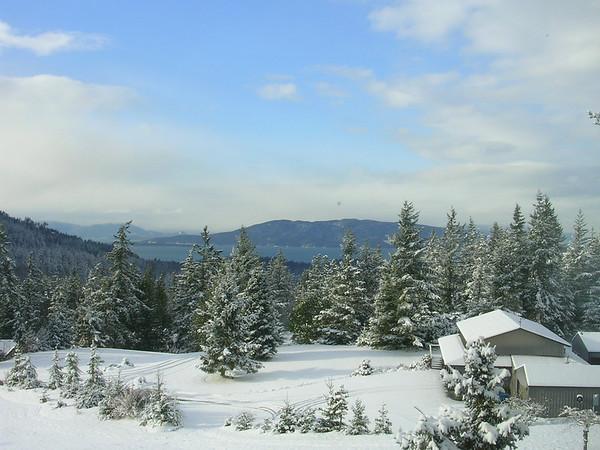 December Snow 2008