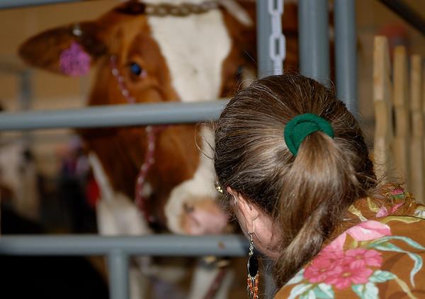 Del Mar Fair 2008 (aka San Diego County)