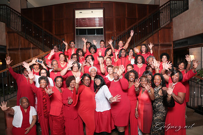 Delta's Red and White Affair Feb 11 2017