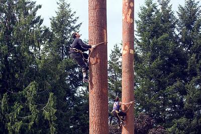 Deming Logging Show june 11 2011