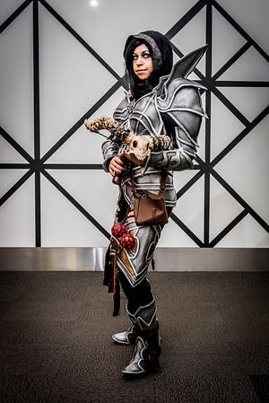 Demon Hunter - Diablo 3