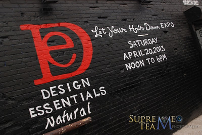 Design Essentials Hair Expo