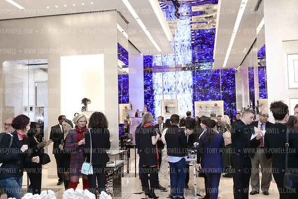 Dior CityCenterDC Charity Shopping Event