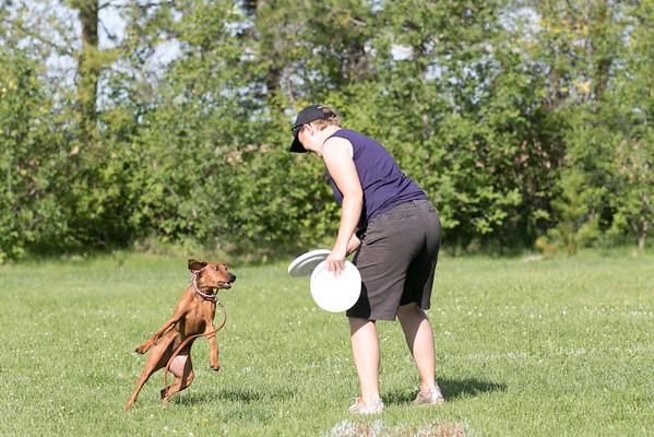 Updog Aug 14