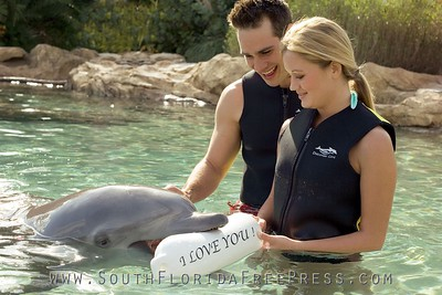 Discovery Cove dolphins have assisted in countless watery wedding proposals, launched love notes, and been a splash at the best of birthday celebrations. For each Special Occasion package, a bottlenose dolphin delivers a personalized message on a keepsake buoy, putting a fantastic end to the already memorable dolphin experience. In addition to the special dolphin delivery, each package features an array of other impressive touches in a unique setting.