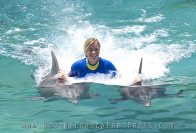 For a truly extraordinary and exclusive experience, guests can spend more time with dolphins with an additional interaction, feeding tropical fish plus behind-the-scenes tour of support areas and time with Discovery Cove's trainers to learn more about the animals that call the park home.