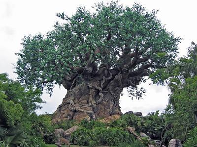 Tree of Life   (Apr 23, 2005, 01:07pm)