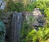 <b>Waterfall in Animal Kingdom</b>   (Apr 23, 2005, 08:33am)