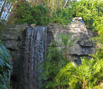 Waterfall in Animal Kingdom   (Apr 23, 2005, 08:33am)