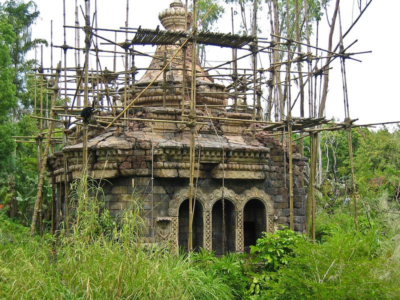 <b>Jungle Structure in Animal Kingdom</b>   (Apr 23, 2005, 01:01pm)