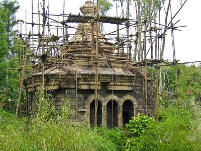 Jungle Structure in Animal Kingdom   (Apr 23, 2005, 01:01pm)