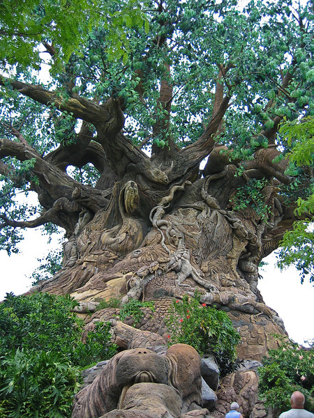 <b>Tree of Life in Animal Kingdom</b>   (Apr 23, 2005, 01:15pm)