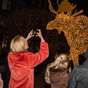 Lichtobject 'Henry The Moose' aan het Lamme van Diesseplein