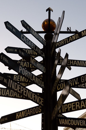 Which way do we go?