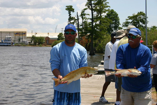do it in orange fish tourn