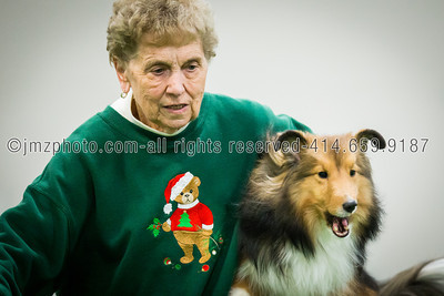 Dog Agility Trials_20131215-142