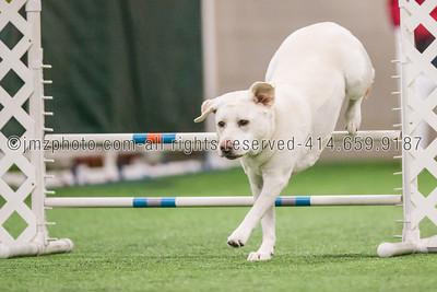 Dog Agility Trials_20131215-36
