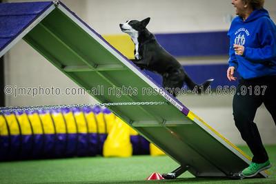 Dog Agility Trials_20131215-191