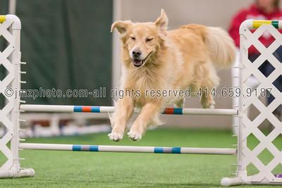 Dog Agility Trials_20131215-33