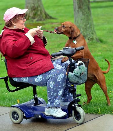 0430 dog cancer fundraiser 2