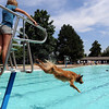 "Gracie Harding gives Ellie the dog the word to jump from the lifeguard tower.<br /> Dogs and owners were able to have some wet fun during Dog Dayz at Scott Carpenter Pool in Boulder on Sunday.  Dog Dayz will continue through September 7, check  <a href=""http://www.BoulderParks-Rec.org"">http://www.BoulderParks-Rec.org</a> for the  daily schedule.<br /> Cliff Grassmick / August 23, 2009"