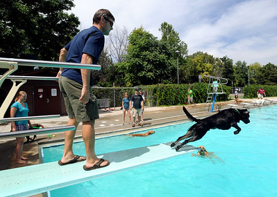 Jeff Cahn watches Champ go for another ball off the board. Dogs and owners were able to have some wet fun during Dog Dayz at Scott Carpenter Pool in Boulder on Sunday.  Dog Dayz will continue through September 7, check www.BoulderParks-Rec.org for the  daily schedule. Cliff Grassmick / August 23, 2009