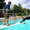 "Jeff Cahn watches Champ go for another ball off the board.<br /> Dogs and owners were able to have some wet fun during Dog Dayz at Scott Carpenter Pool in Boulder on Sunday.  Dog Dayz will continue through September 7, check  <a href=""http://www.BoulderParks-Rec.org"">http://www.BoulderParks-Rec.org</a> for the  daily schedule.<br /> Cliff Grassmick / August 23, 2009"