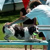 "Dog Pfluger tries to get his dog, Rocky, to jump off the board.<br /> The first day of the annual Dog Dayz at Scott Carpenter Pool was held on Wednesday. For more photos and a video of the dogs, go to  <a href=""http://www.dailycamera.com"">http://www.dailycamera.com</a>.<br /> Cliff Grassmick / August 18, 2010"