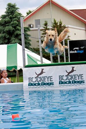 Dog Event