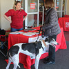 Registration for the Dog Gone Cold Race at Sports Authority
