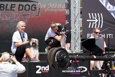 2017_Purina_Competition-26