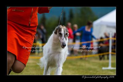 DS5_7387-12x18-06_2016-Dog_Show-W