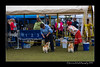 DS5_9847-12x18-06_2016-Dog_Show