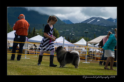 DS5_9116-12x18-06_2016-Dog_Show