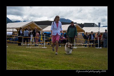 DS5_9027-12x18-06_2016-Dog_Show