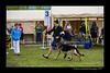DSC_8009-12x18-06_2015-AKC_DogShow-W