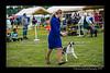 DSC_0257-12x18-06_2015-AKC_DogShow-W
