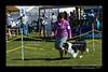DSC_0323-12x18-06_2014-DogShow-W