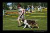 DSC_0316-12x18-06_2014-DogShow-W