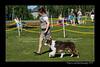 DSC_0317-12x18-06_2014-DogShow-W